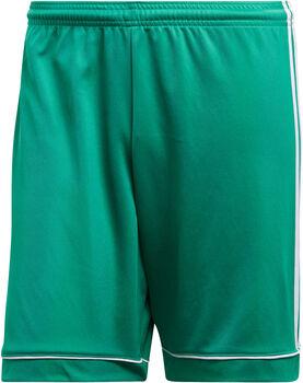 adidas SQUAD 17 SHO férfi rövidnadrág Férfiak zöld