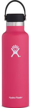 Hydro Flask  Kulacs HydroFlask Standard Mouth rózsaszín