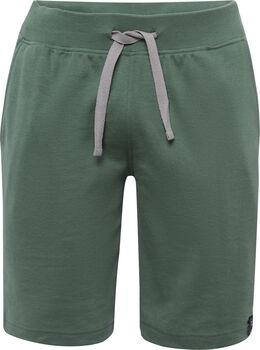 Roadsign férfi rövidnadrág Férfiak zöld