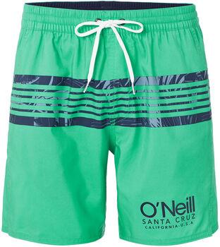 O'Neill Pm Cali Stripe ffi. fürdőnadrág Férfiak zöld