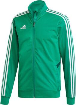 adidas TIRO19 TR JKT Férfiak zöld