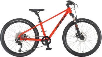 KTM Wild Speed Disc 24 gyerek hegyikerékpár narancssárga