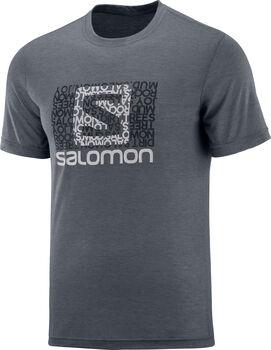 Salomon Explore Graphic férfi póló Férfiak szürke