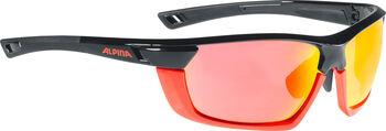 ALPINA Tri-Scray Multiframe napszemüveg Férfiak fekete
