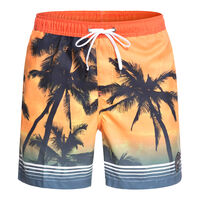 QUIKSILVER Paradise Voll.17