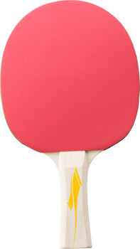 TECNOPRO PRO 2000 ping-pong ütő fekete