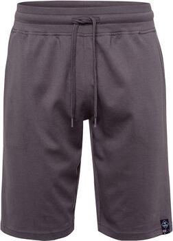 Roadsign Interlock férfi rövidnadrág Férfiak szürke