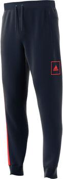 adidas M AAC Reg Pant Férfiak kék