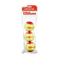 Wilson Starter Easy Balls